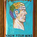Phrenology by Garry Gay