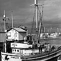 Phyllis Purse-seiner Monterey Wharf California  Circa 1940 by California Views Archives Mr Pat Hathaway Archives