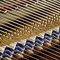Piano Abstract 6582 by Karen Celella