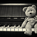 Piano Bear by Tim Gainey
