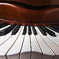 Piano Dreams by Garry Gay