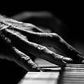 Piano Hands by Noel Ulriksen
