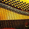 Piano Harp by Randi Kuhne