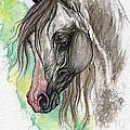 Piber Polish Arabian Horse Watercolor Painting by Angel Ciesniarska