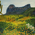 Picacho Poppies by Rich Civiok