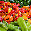 Pick A Peck Of Peppers by GK Hebert Photography