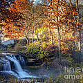 Pickwick Mill Falls II by Kari Yearous