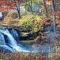 Pickwick Mill Falls by Kari Yearous