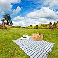 Picnic Blanket And Basket In Sunny Field by Jo Ann Snover