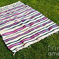Picnic Blanket by Luis Alvarenga