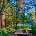 Picnic By The Methow River by Omaste Witkowski