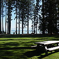 Picnic Place by Peter Hennessey