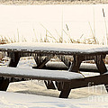 Picnic Table In Winter by Louise Heusinkveld
