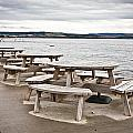 Picnic Tables by Tom Gowanlock