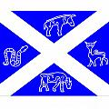 Pictish Scotland Flag 2 by Frederick Holiday