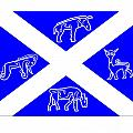 Pictish Scotland Flag by Frederick Holiday