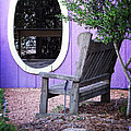Picture Perfect Garden Bench by Ella Kaye Dickey