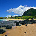 Picture Perfect Haena Beach by Marie Hicks