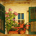 Picturesque Taormina Window  by Carla Parris