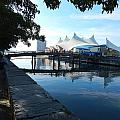 Pier 5 by Annette Miller