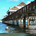 Pier 60 - Clearwater Florida  by L Wright
