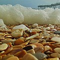 Pier Foam And Shells 5 10/13 by Mark Lemmon