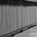 Pier by Lynda Dawson-Youngclaus