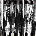 Pier Pilings Black And White by Alice Gipson