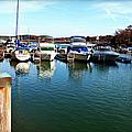 Pier Pressure - Lake Norman by Paulette B Wright