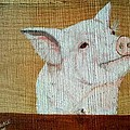 Pig Smile by Debbie LaFrance