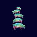 Pig Stack by Jenny Armitage