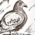 Pigeon II Sumi-e Style by Beverley Harper Tinsley