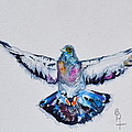 Pigeon In Flight by Beverley Harper Tinsley