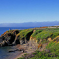 Pigeon Point Lighthouse by Buddy Mays