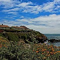 Pigeon Point Lighthouse Painted by Judy Vincent