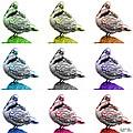 Pigeon Pop Art 5516 - Fs - Wb - M-  Modern Animal Artist James A by James Ahn
