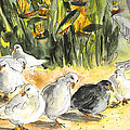 Pigeons In Benidorm by Miki De Goodaboom