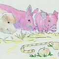 Pigs Cartoon by Mike Jory