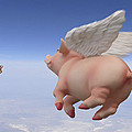 Pigs Fly 2 by Mike McGlothlen