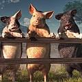 Pigs On A Fence by Daniel Eskridge