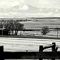 Pikes Peak From Ramah by Clarice  Lakota