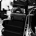 pile of luggage on trolley being pushed out of Reina Sofia Sur TFS South Airport Tenerife Canary Islands Spain by Joe Fox