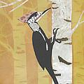 Pileated Woodpecker by Brian Fuchs