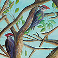 Pileated Woodpeckers by Patty Weeks