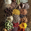 Piles Of Various Spices On Metal Surface by Maren Caruso