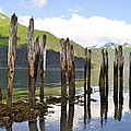 Pilings by Cathy Mahnke