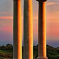 Pillars Of Life by Kasia Bitner