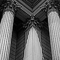 Pillars Of Strength by Tom Gari Gallery-Three-Photography