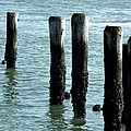 Pillars Of The Sea by Deborah  Crew-Johnson