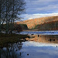 Pine Acres Lake Reflections  by Neal Eslinger